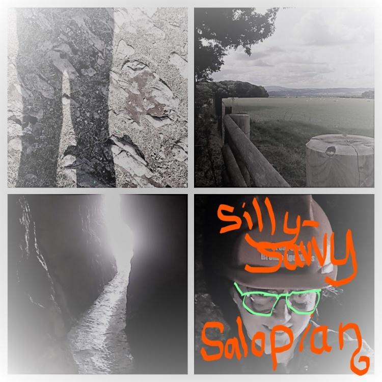Inkedcaving collage_LI