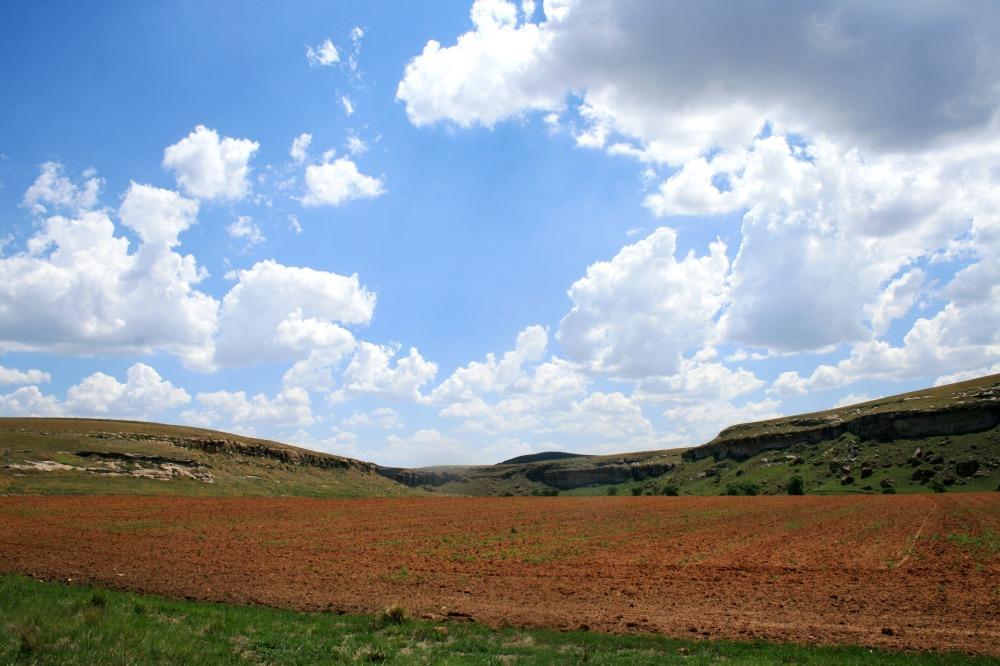field-180598_1920.jpg