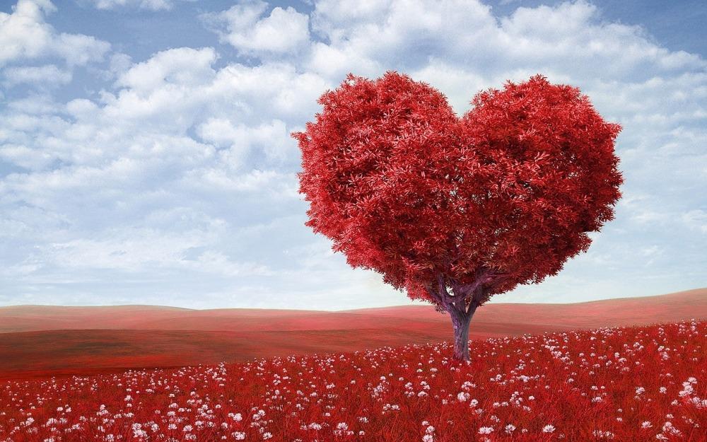 heart-shape-1714807_1280