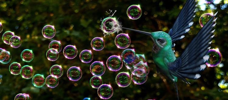 soap-bubbles-3550705_1920