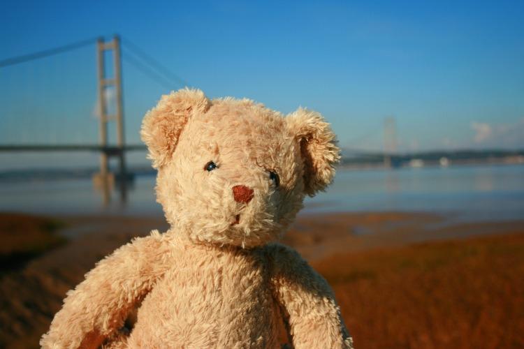 teddy-bear-1164830_1920