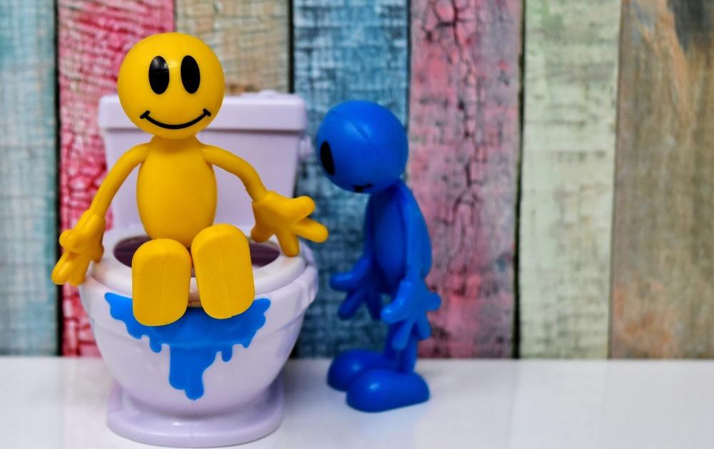 toilet-3298205_1920